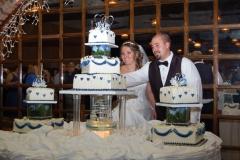 Daniela's Wedding Cake